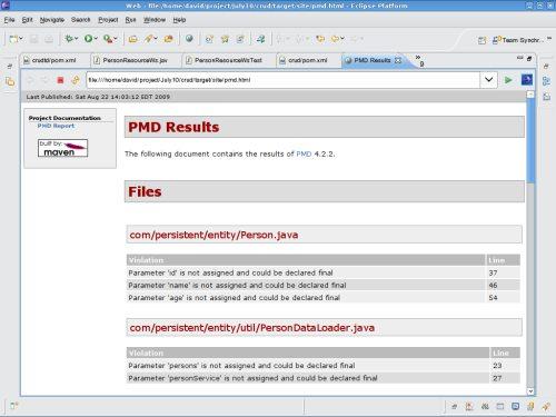 PMD Report